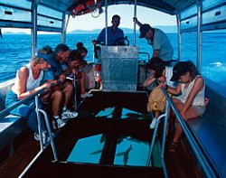 Roatan Cruise Ship Excursion